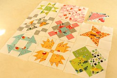 Hand Pieced Quilt-A-Long Blocks 1-8 (Erin @ Why Not Sew? Quilts) Tags: hand quilt blocks 18 pieced