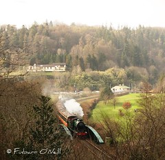 Woodenbridge (finnyus) Tags: irish train rail railway trains railtour railways woodenbridge coaches excursion 2012 260 carriages 461 1541 gsr 1505 cie 1522 1514 1506 3185 1523 1532 rpsi dser ci k2class railwaypreservationsocietyofireland beyerpeacockco finbarroneill sparelink