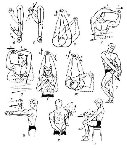 Базовые упражнения для