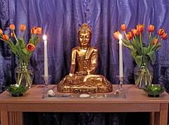 Nagaloka Buddhist Center USA shrine