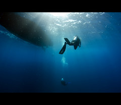 Underwater Love - Explored (Nuno Miguel Duarte) Tags: hawaii underwater maui lanai