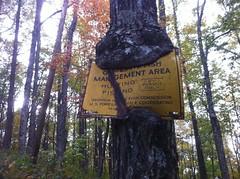 Ancient WMA Sign