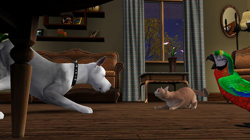 The Sims 3 Pets Cat Dog and Parrot