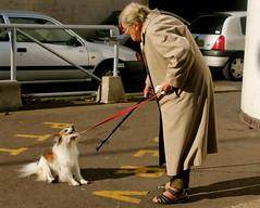 (ch@) Tags: chien paris 19éme