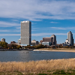 Skyline and Geese, Milwaukee, WI