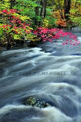 Nissitissit River, Brookline NH (Ty Randall) Tags: water river nissitissit brooklinepotanipolakenhnewhampshiretyrandall