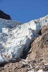 Glacier Icefields Parkway IMG_2532
