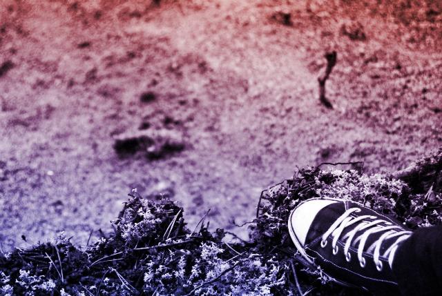 DSC_0598plkojiuhgbyfctxd