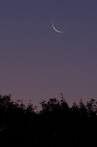 New Moon Rising on a New Day