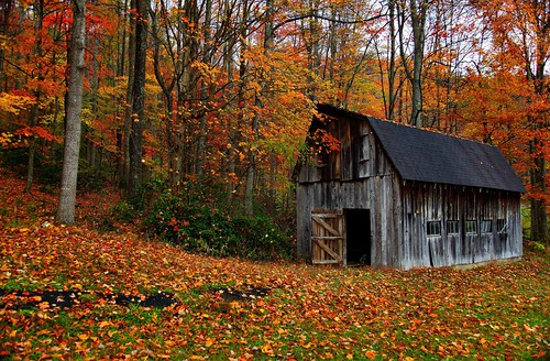 Autumn Country Barn by ForestGladesiWander