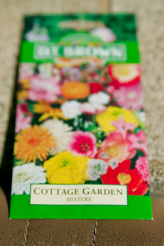 Cottage Garden Mix