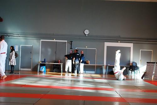 6299401611 8e9d02ecaa London & Hove Shodokan Aikido Festival 2011