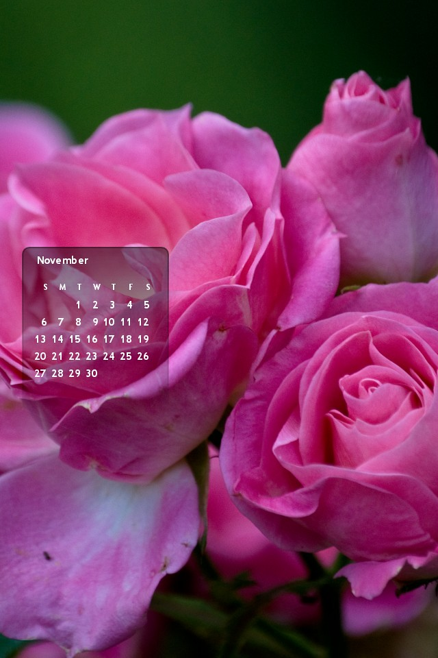 November 2011's calendar :: iPhone4