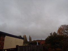 A morning of drizzling rain PB010043 (tomylees) Tags: morning november autumn sky weather grey tuesday raining essex 2011 drizzling