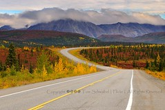 The Long Winding Road (pdxsafariguy) Tags: road autumn trees mountains color lines alaska clouds highway seasons curve cantwell parkshighway tomschwabel