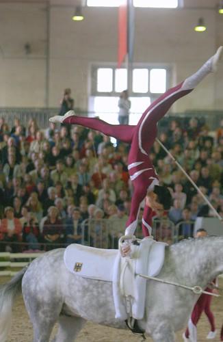 Mark Phillip Götting Saumur 2005