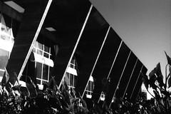 Formas (lomocouple) Tags: zorki bw film riodejaneiro analog 35mm iso100 lomo lomography centro toycamera delta mam ilford toycam