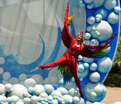 flight - Blue Horizons (littlestschnauzer) Tags: world show park blue red sea summer usa bird phoenix costume orlando florida live stage feathers aerial cast gymnast wires seaworld performer horizons 2011