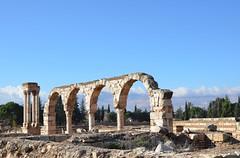 Anjar, Umayyad city, al-Walid I, 705-15, (3) (Prof. Mortel) Tags: lebanon umayyad anjar