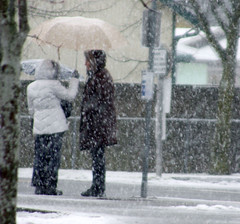 Bus Stop (Jill(:) Tags: winter snow cold love umbrella couple couples monochromatic busstop chilly umbrellas chill precipitation neutral neutralcolors standingatabusstop