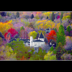 Autumn for the 1% (jackaloha2-Slowly feeling better) Tags: autumn house fall nevada reno treeline mansions bestcapturesaoi magicunicornverybest magicunicornmasterpiece jackaloha2 mygearandme photoshopcs5 mygearandmepremium masterclasselite
