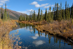 The North Ogilvies (kdee64) Tags: autumn september autumncolours yukon dempsterhighway northerncanada northernyukon northogilviemountains