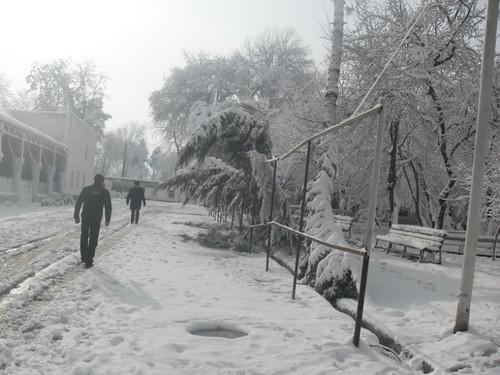 Последствия снегопада в Курган-тюбе (19)