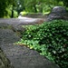 fort tryon_beh-20