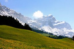 Springtime in the Alps (Ana Bel) Tags: switzerland europe