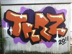 TRRZ 2011