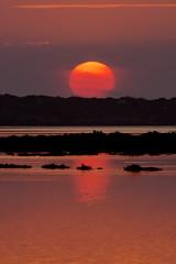 The End of a Day (Hugo Carvoeira) Tags: sunset orange sun reflection portugal faro nikon day silhouete ii end algarve nikkor 18200 vr ludo d7000