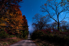 K7__9612 (Bob West) Tags: longexposure nightphotography ontario night moonlight nightshots startrails k7 southwestontario bobwest pentax1224