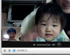skype とらちゃん
