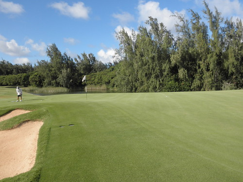 Turtle Bay Colf Course 339