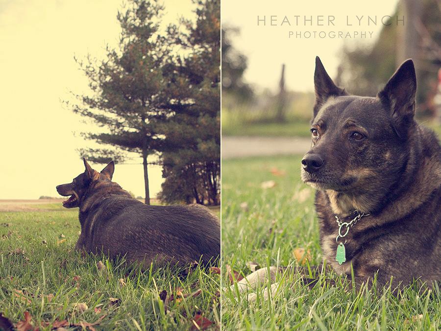 HeatherLynchPhotographyAK6