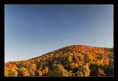 Autumn line (Betino Miclea) Tags: blue autumn trees sky orange mountain fall forest catchycolors season landscape uv filter romania nd parc brasov hoya aventura cokin gradual polariser p121 d5000 flickraward brașov parcaventura