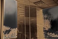 Divided World View.1 (mcreedonmcvean) Tags: reflection machines materials directionallight goldenhourlight doublewindow homeneighborhood homeconstructionsite neglectedofficespace