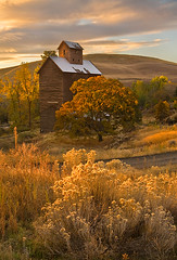Granary Fall (David M. Cobb) Tags: old building fall architecture oregon sunrise october antique farm or farming structure agriculture boyd granary rabbitbrush