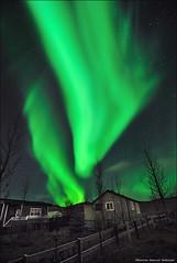 The Great Gig In The Sky (Ji Gunnar) Tags: trees house green fence stars lights iceland nikon long exposure iso tokina aurora 400 northern f28 sland borealis d300 20sec norurljs mosfellsdalur 111628