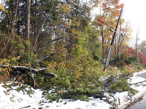 trees and powerlines down: Snowstorm of October 2011, New Jersey