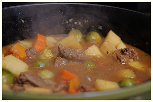 Autumn's Harvest Stew
