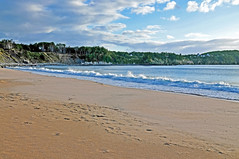 DGJ_4712 - Ingonish Beach