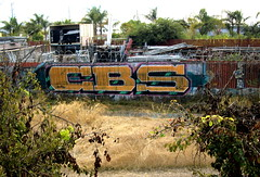 CBS (Awful One) Tags: awful cbs lajae