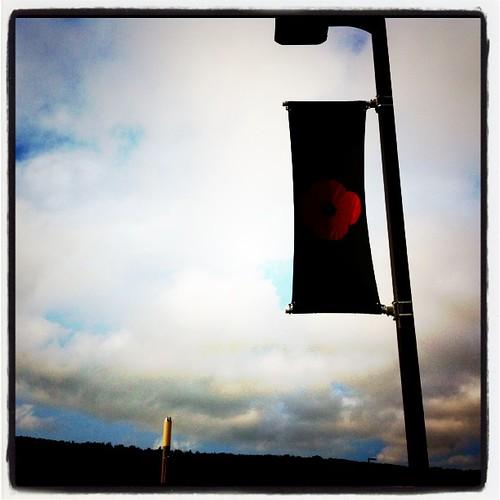 Poppy flag