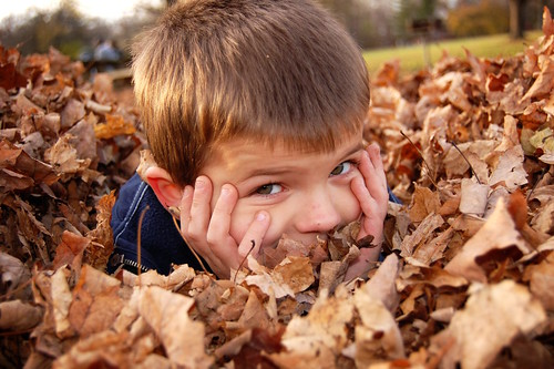 Harrison Playing In The Leaves