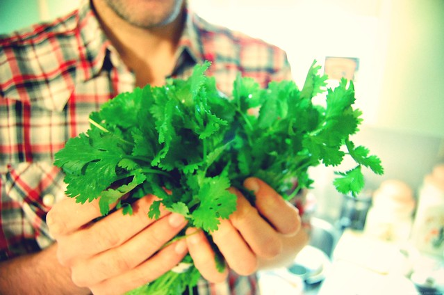 cilantro is good for the soul