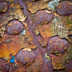 riveting...... (Nathan Reading) Tags: old abandoned metal rust iron paint decay steel rusty flaking flaky decayed
