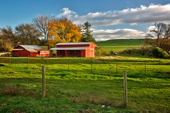 Red barn, autumn colors near Petaluma, California