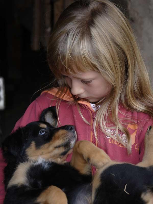Noudlsberger Hof - Mädchen mit Hund