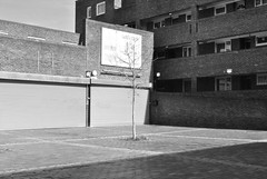 Ethelred Estate, Vauxhall / Kennington border (J@ck!) Tags: tree london blackwhite vauxhall kennington lowrise banality socialhousing concretejungle londonboroughoflambeth londonbook lambethwalk ethelredestate